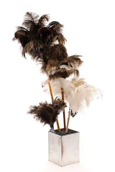 feather duster, ostrich, dusting