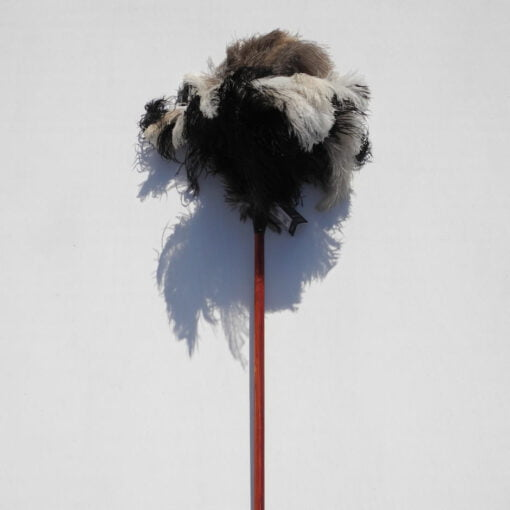 ostrich feather duster for clearing the cobwebs