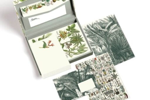 Stationery set in box with botanical designs