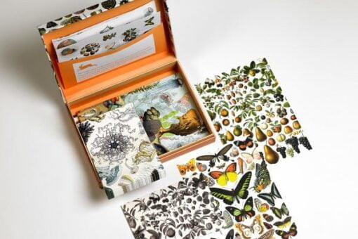 Letter writing set with Natural History designs