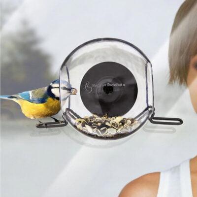 bird feeder for the window